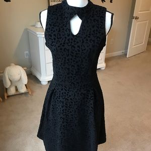 Black leopard fit and flare dress by versions